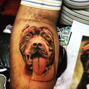 #pitbull #pitbulltattoo
