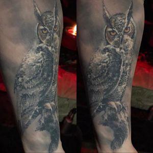 #owl #paulbooth #lastritestattoo #healed