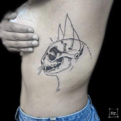 Anatomicat 🐱 Contact mymyreverzvisceral@gmail.com FB/SNAP/INSTA/TUMBLR : Mymy Reverz Visceral #aixmaville #aixenprovence #inkfeature #inkedartgroup #drawing #tattoo #visceral #bestjobever #dotwork #tattooflash #blackwork #details #dark #linework #black #blackandwhite #blackline #graphicdesign #geometric #tattooart #tattoodesign #inkedgirls #ink #inked #flash #flashtattoo #skull #cat #anatomy