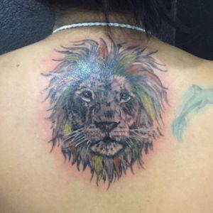 #liontattoo #lion #tattoo #blackngreytattoo #backtattoo #realistic #realism #cheyennehawkpen #eikondevice #inked #mexican #tattooartist