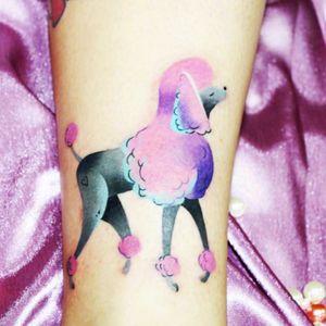 #poodle #pet #dog #pastels