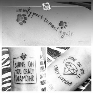 """Tats No.39-41 """"In Memory of Friends"""" #tattoo #lettering #dogs #paws #diamons #pinkfloyd #friends #rip #inlovelymemory #bylazlodasilva"""
