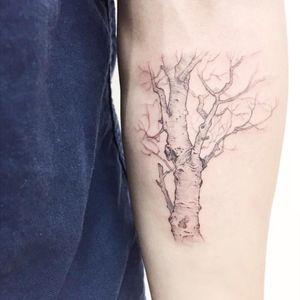 Nice change #tree #nature