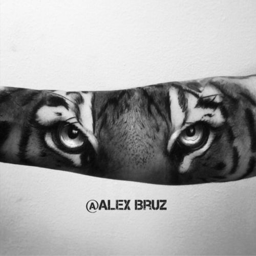 #AlexBruz #tiger #tigereyes #eyes #animal