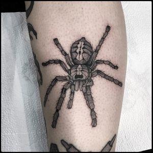 #totemica #tunguska #black #tiger #spider #tarantula #poecilotheria #tattoo #blackworkers #bolognatattooexpo #tattooexpobologna