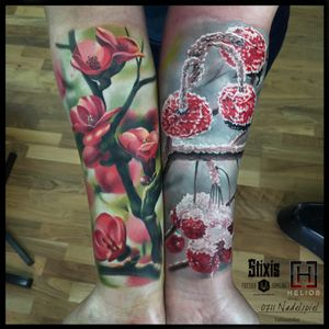 A cherry tree, a customer, her two arms, two days, and two seasons... 🍒❄️ #tattoo #tattooart #cherrytree #cherrytreeblossom #cherrytreetattoo #armpieces #colortattoo #realism #realistictattoo #winter #spring #seasons #frozen #cherry #cherryblossom #tree #treetattoo #snow #ice #flowertattoo #flowers #fruit #artwork #artist #tattooartist #toroktattooart #germany #stuttgart
