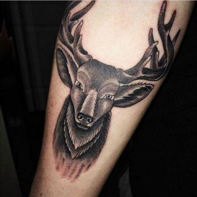 #stag #blackAndWhite #forearm #forearmtattoo #deertattoo #deer