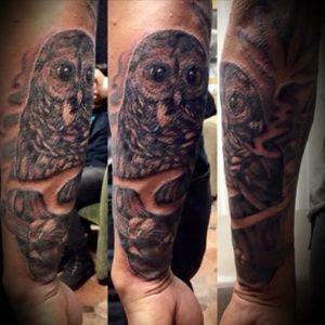 Little owl tattoo i did #cricktattoos #workhorseironswest #dringenbergtattoomachines