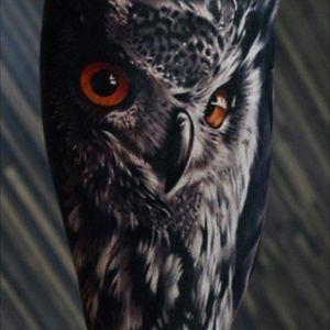 The language of the eyes #Owl