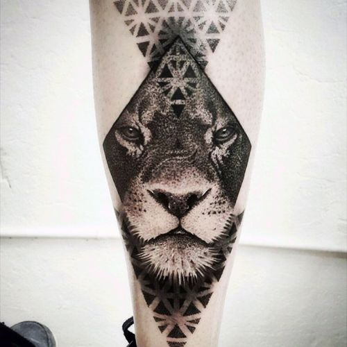 In honor of my son Lion