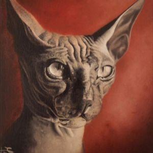 #art #artwork #cat #colombia #bogota #tattoobogota #oil #pintura
