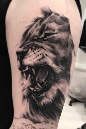 Ralistic lion. Black & Grey. Work in progress.