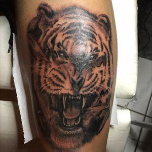 Tiger tattoo #silverbackink #hustlebutterdeluxe #blackandgrey #killerink
