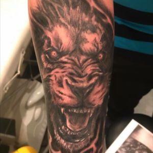 Angry lion #lion#angry