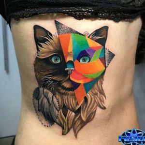So many different styles in one. Nice #cat #geometric #dotwork