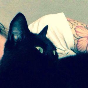 #hibiscustattoo #blackcat #greeneyes