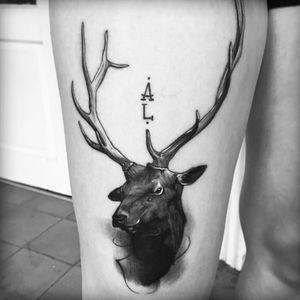 #victordelfueyo #moose #antlers #animals