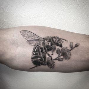 #bee #tattoo #tatouage #beetattoo #abeille #abeilletattoo #thistle #thistles #thistletattoo #chardon #chardontattoo #realistictattoo #realism #blackandwhitetattoo #blackandgrey #blackandgreytattoo #blackandwhite #tattoodo #dot #dots #dotwork #dotworktattoo #petitspoints #lespetitspointsdefanny #tattoolausanne