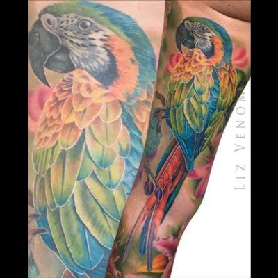A #macaw i did as part of a full leg #sleeve #bombshelltattoo #ink #realism #colorrealism #birdtattoo #bird #parrot #pirate #fullcolor #tattoosforwomen #amazingtattoos #colour #color #lizvenom #tattooidea #besttattoos #amazing