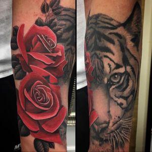 @steve_h_moranre #SteveHMorante #tiger #rose