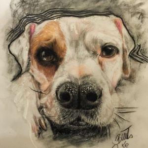 #tattoodrawing #sketch #animaltattoo #animalportrait