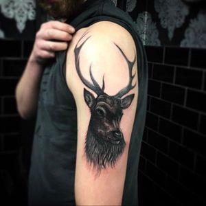 Big stag deer tattoo #stag #deer #tattoo