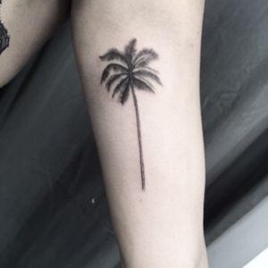 #tattoo #palmtree #treetattoo #blackwork #btattooing #fineline