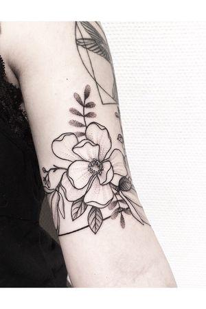 #magnolia #flower