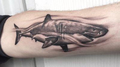 #shark #sharktattoo #blackandgrey #realism #realistic