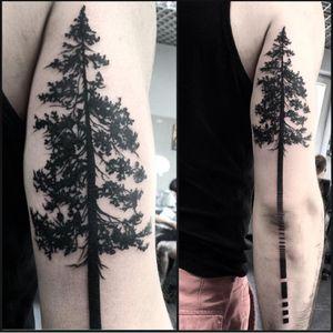 #Szejno #tree