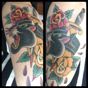 #traditionalamericantats #roses #traditionaltattoo #portugueseartist #pantherhead #dagger #traditional