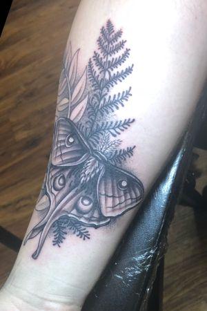 #luna #moth #tattoo done recently! #stippled #blackwork #baltimore #maryland #mtvernonbodyart