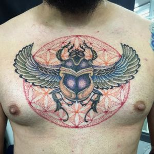 #Tattoo #dotwork #pontilhismotattoo #pontilhismo #flordavida #escaravelho #dcmachinesvortex #inkmachinestingray #stingraytattoomachine #woldfamousink #kwadronneedles #materiais @marcodelapiel #& @weslleybarrossupply