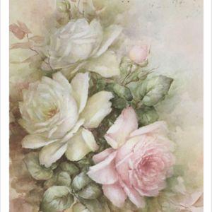 #sleeveinspiration #megandreamtattoo #floraltattoo #floralsleeve