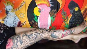 My paintings & my leg sleeve, one day, I would love to have all these Australian Native Cockatoos on my right arm #japanesetattoo #fulllegtattoos #legsleeves #geishatattoo #RoseTattoos #cherryblossomtattoo #heartlockettattoo #tigertattoo #cobratattoo #cockatoo #blackcockatoo #majormitchellcockatoo