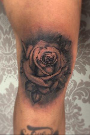 #rose #rosetattoo #kneetattoo #knee #blackandgreyrose #bnginksociety #tattooartist #tattooart