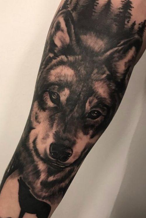 Realistic wolf. Black & Grey.