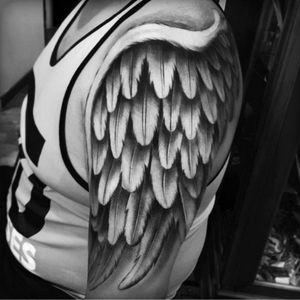 #AlexBruz #wings #feathers