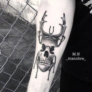 #skull #dotwork #bug #insect #carocha #dotwork #dotworktattoo #dotworktattoos #lineworktattoo #lineworktattoo #LineworkTattoos #pontillism #pontillismtattoo #marconobre #manobre #tattoo