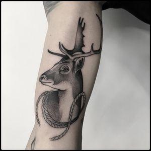 #totemica #tunguska #black #deer #head #antlers #cervidae #tattoo #blackworkers #holdfasttattoostudio