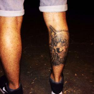 #wolf #wolftattoo #wolfhead #tattoowolf #lobo #lobotattoo #tattoolobo #boxinggloves