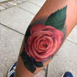 #rose i did #colorrose #tatto #colorrealism #colorrealismo #colorrealistic  #like4follow #like