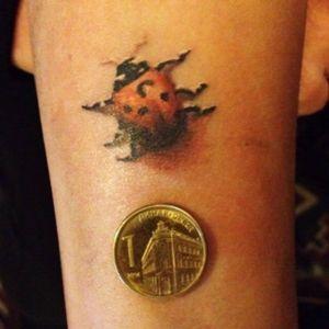 Ladybug miniature