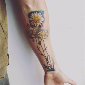#daisytattoo #armtattoo #forearm #ink#inked #inkmen#inkedmen #margaritaflower #margaritatatto#flowertattoos