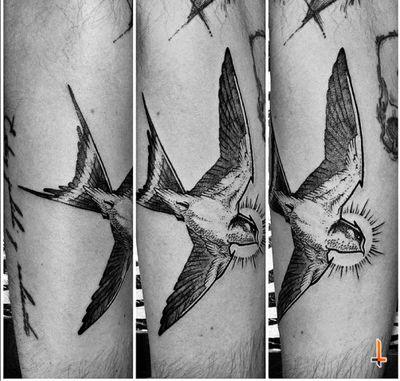 Nº609 #tattoo #tatooed #ink #inked #boywithtattoos #sparrow #sparrowtattoo #bird #birdtattoo #flying #wings #stencilstuff #dynamicink #dynamiccolor #cheyennetattooequipment #cheyennetattoo #hawkpen #soulflowercartridges #bylazlodasilva Based on another artist design