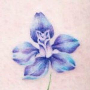 #flower #floral #color