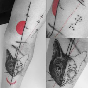 This is my cat, half normal, half skull. His name Newt (Aliens) is written in braille #cat #dots #brailtattoo #skull #moon