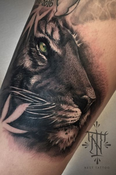 realistic tiger on the leg in black and gray and a touch of color. #thebesttattooartists#tattooworkers#tattoooftheday#tattoos_of_instagram#inkstagram#neotradsub#leopard#inked#tattooed#blxckink#tattooflash#inkaddicts#tattoos#thebestspaintattooartists#tbsta#tattoos#ink#tsttoed#tattooartist#tattooart#tattoolife#inkedup#girlswhittattoos #inked#marbella #badajoz