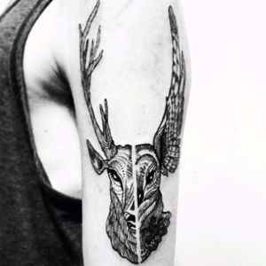 #sergiomartin #owl #deer