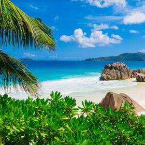 #megandreamtattoo #hawaii #beach